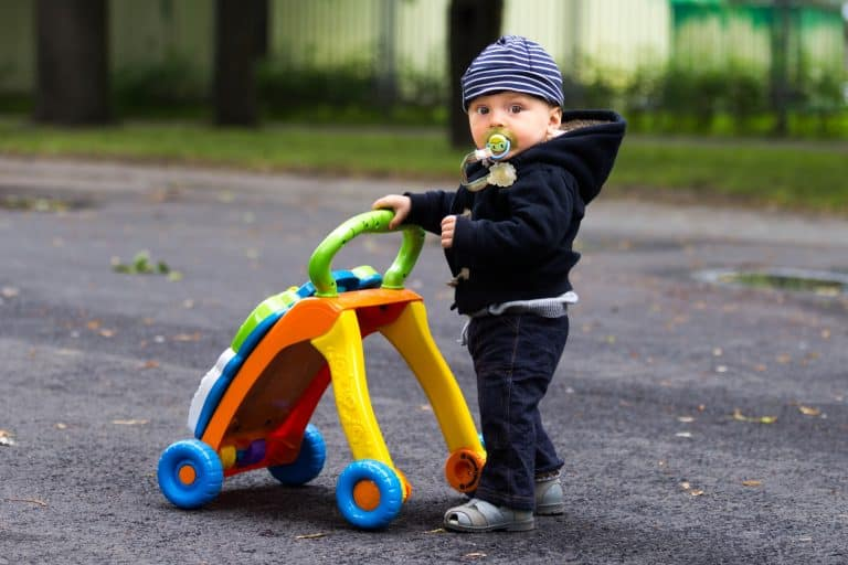 Top 10 Best Walking Toys for Baby in 2021 Reviews and Buying Guide